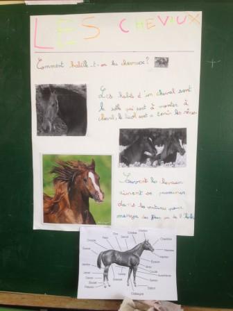 Les CE1-CE2 vous présentent leurs exposés. - Blog des écoles d'Effry, de Wimy et d'Ohis